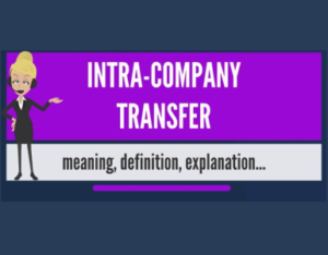 Intra Company Transfer | Stepwise Immigrations Surrey, Canada
