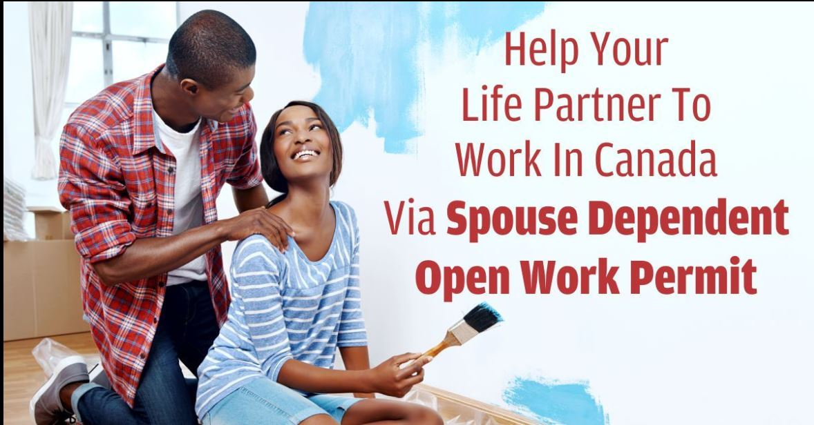 Spousal Open work permit